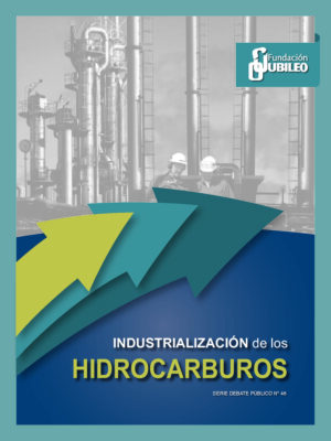 thumbnail of Industrializacion_hidrocarburos
